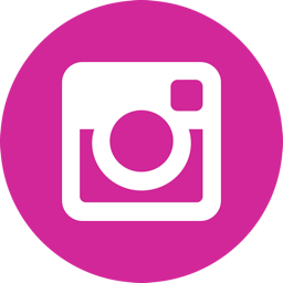 instagram story viewer online